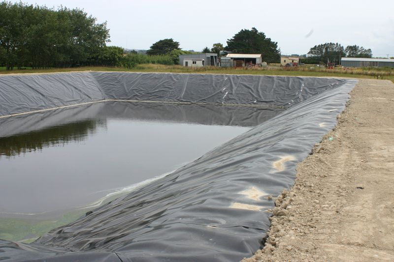Hdpe liner for slurage pond at dairy farm agru for Fish pond installers